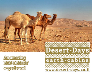 The Ultimate ECO-DESERT accommodation!