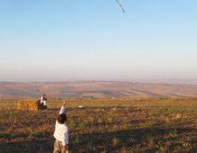 flying kites Israel