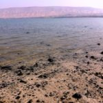 Ta'am Kinneret (Taste the Sea of Galilee) Food Festival!