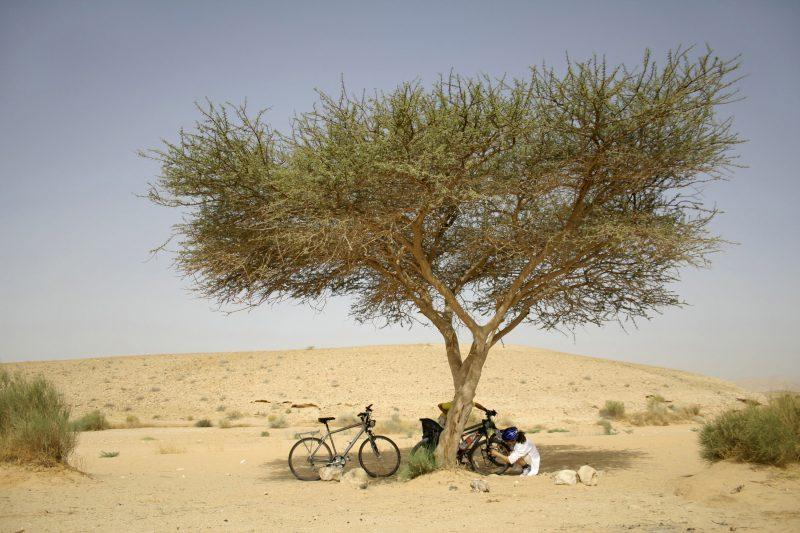cyclists desert, israel