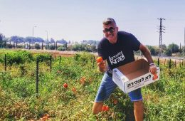 Leket Volunteering