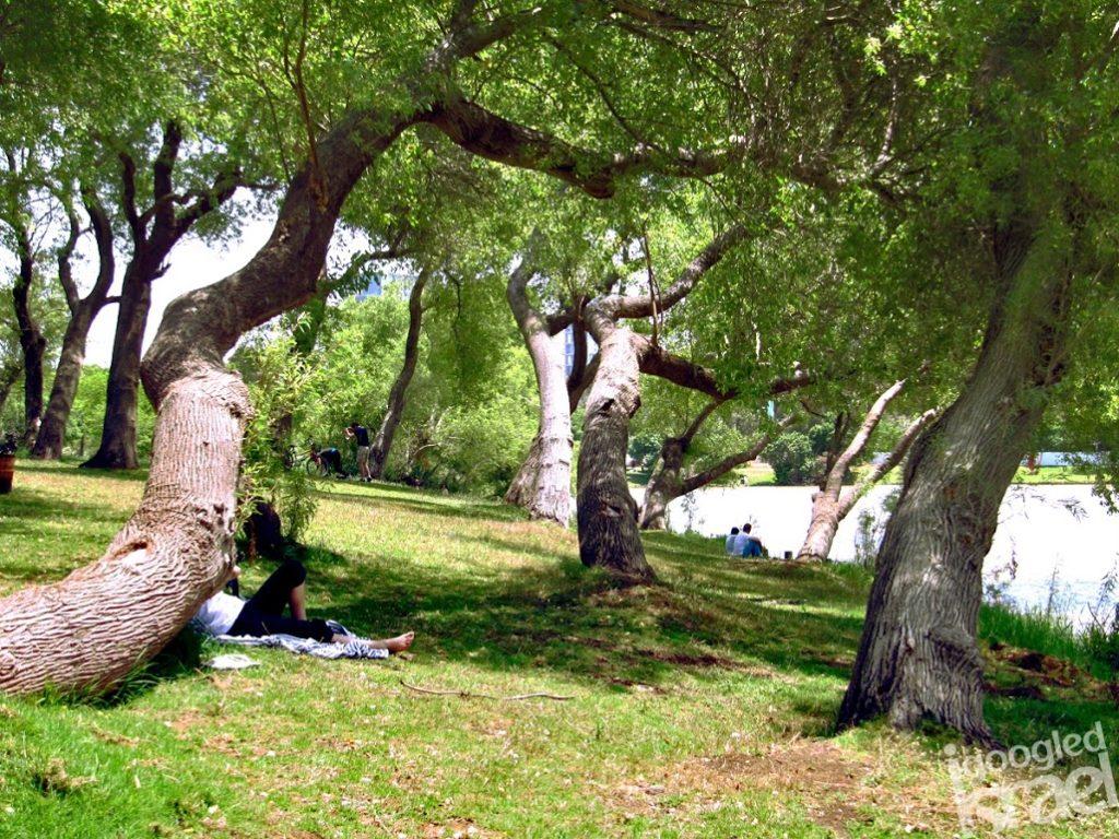 Tel Aviv hayarkon park