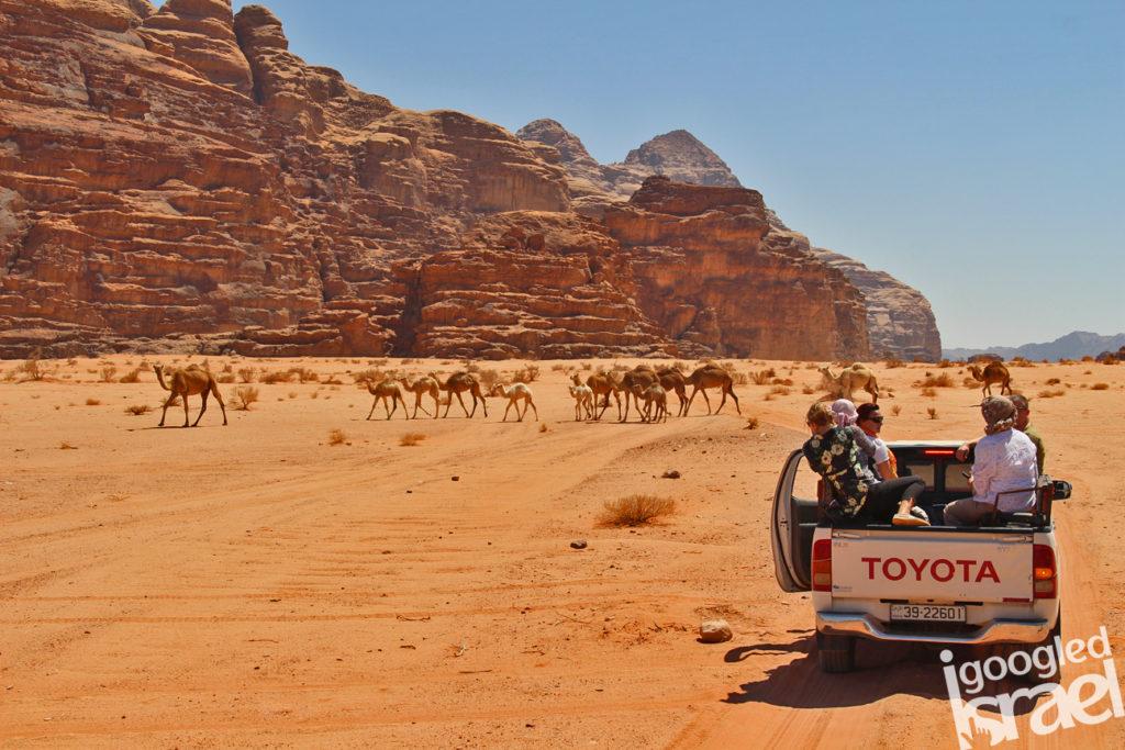 Wadi Rum tour