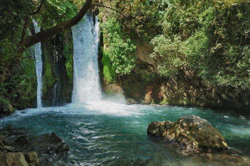 Waterfall In The Banias